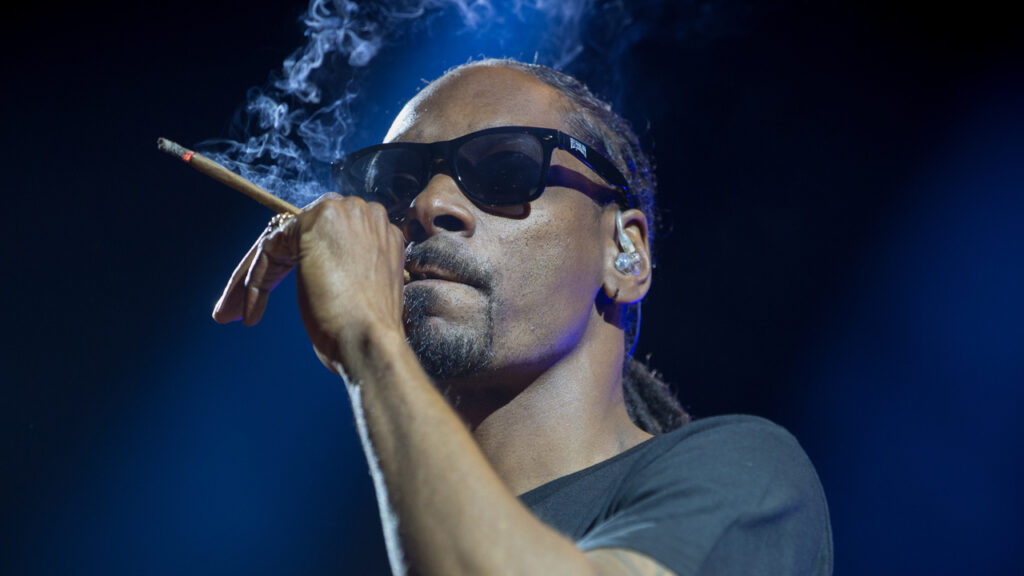 hip-hop-star-snoop-dogg-says-bitcoin-'here-to-stay'—-lauds-nfts-for-creating-direct-connection-between-artists-and-fans