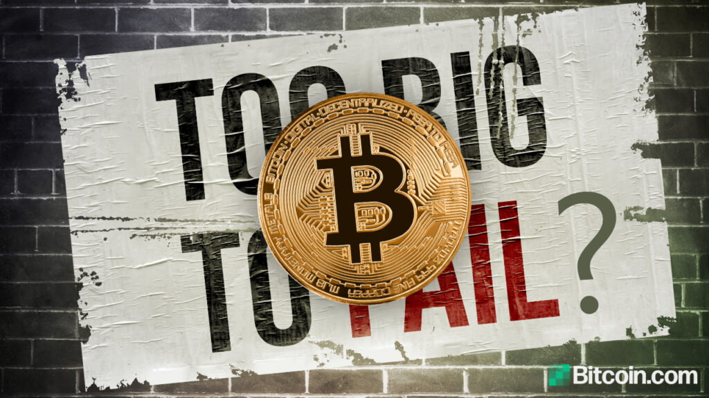 economist-says-bitcoin-isn't-too-big-to-fail-—-warns-btc-can-only-establish-itself-if-governments-allow-it